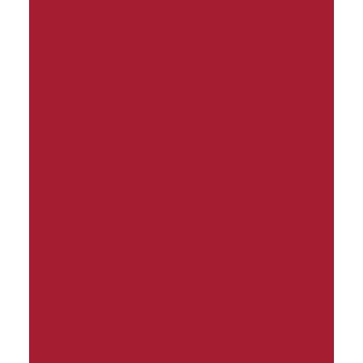 zaštita ikonica